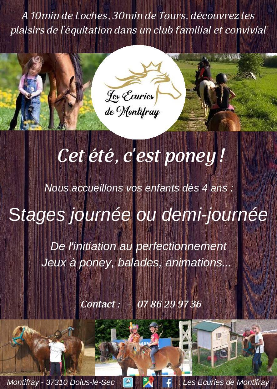 Stages équitation touraine, stages enfants poney club de Montifray Loches