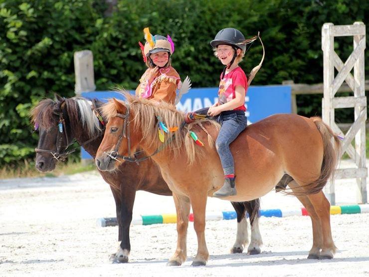les ecuries de montifray - centre equestre touraine - poney club loches